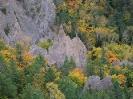 Природа :: Осень в тайге